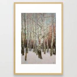 Birches. Winter Framed Art Print