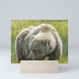Mama Brown Bear, No. 1 Mini Art Print