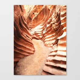 The Power of Water Canvas Print