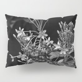 Black and White Flowers in the Dominican Republic Pillow Sham