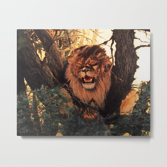 Season of the Big Cat - Mad Dogs and Lions Metal Print