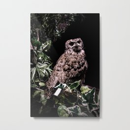 Handsome Hooter Metal Print