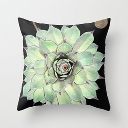 Sempervivum Eye 02 Throw Pillow