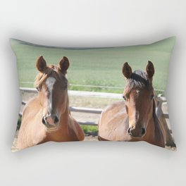 Horse Friends Photography Print Rectangular Pillow