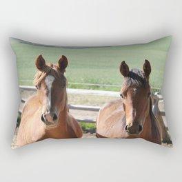 Horse Friends Photography Print Rectangular Pillow