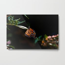 The Monarch Metal Print