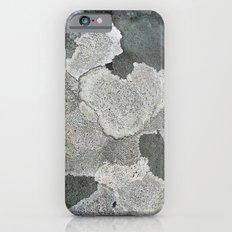 Lichen Magic Slim Case iPhone 6s