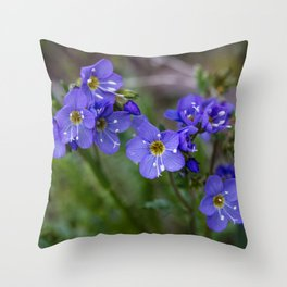 Jacob's Ladder - Yellowstone National Park Throw Pillow