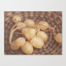 White Muscat Grapes Canvas Print