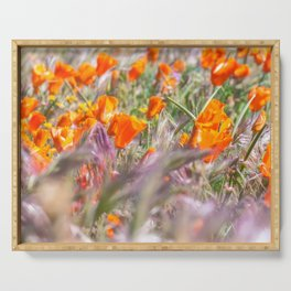 Poppies Field 3 Serving Tray