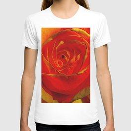 Amber Rose T-shirt