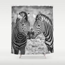 B&W Zebra 3 Shower Curtain
