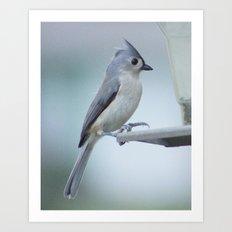 The Little Bird Art Print