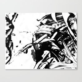 Blck&Whte 2 Canvas Print