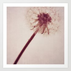 dandelion love Art Print