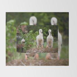 Orphaned two White Storks Throw Blanket