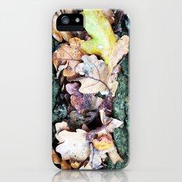 Leaf gully iPhone Case