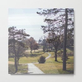 Wanderlost   Adventure Nature Photography of Outdoor Hiking Path and Forest Metal Print