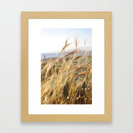Wild grass in the wind by the sea Framed Art Print