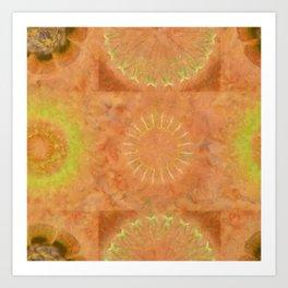 Lunular Balance Flowers  ID:16165-051446-23480 Art Print