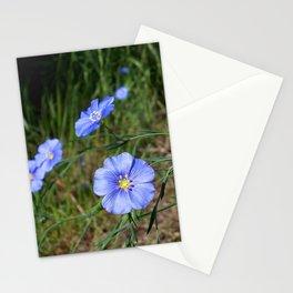 Blue 1 Stationery Cards