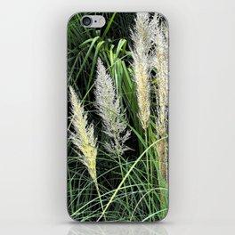 Florida Grasses iPhone Skin