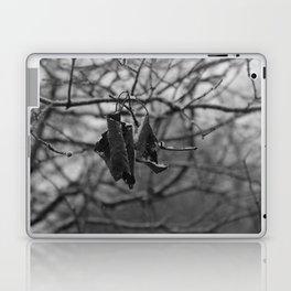 Hanging Laptop & iPad Skin