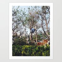 nan lawson Art Prints featuring Pruning in Nan Lian by Diana Basto Ferreira