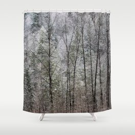 Snow Dusted Trees, No. 1 Shower Curtain