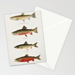Illustrated North American Freshwater Trout Game Fish Identification Chart Stationery Cards