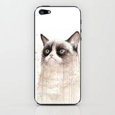Grumpy Watercolor Cat Geek Meme Whimsical Animals iPhone & iPod Skin