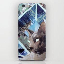 Nude Cat iPhone Skin