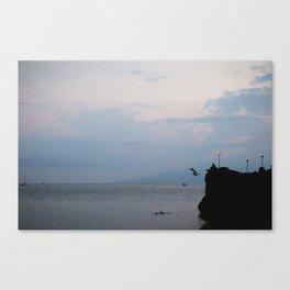 A Hawaiian Cliff Jump Canvas Print