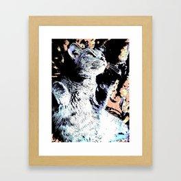 Dreaming Cat Framed Art Print