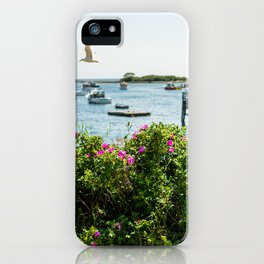 Rosa rugosa (Beach Rose) iPhone Case