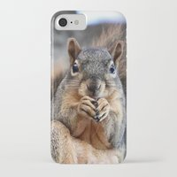 death cab for cutie iPhone & iPod Cases featuring Cutie! by IowaShots