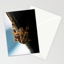 Spider Crawl  Stationery Cards