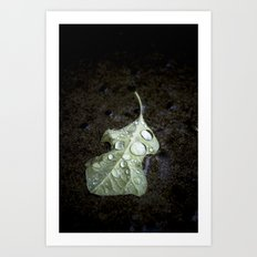autumn rain. Art Print