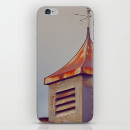 Rusted Rooftop iPhone Skin