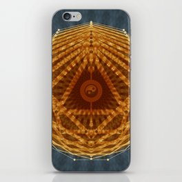 Mandala of Radiant Abundance (grey-gold) iPhone Skin