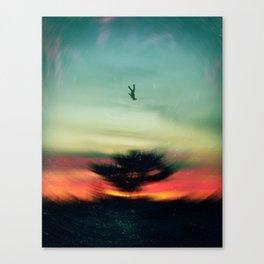 Radical Falling Canvas Print