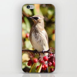 Cedar Waxwing in a Crab Apple Tree iPhone Skin
