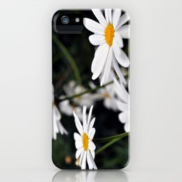 Margherite iPhone Case