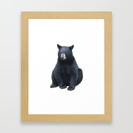 Young black bear sitting , isolated on white background Framed Art Print
