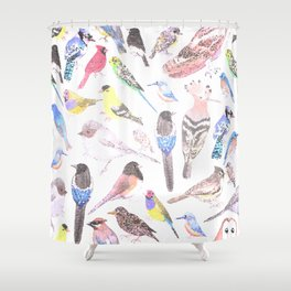 Birds of America- pets and wild birds in stained glass Shower Curtain