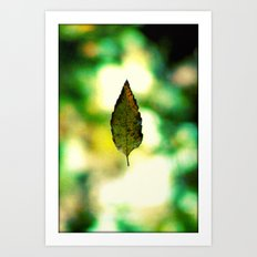 All the leaves are brown...except this one. Art Print