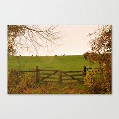 Sunshine on the Pasture Gate Canvas Print