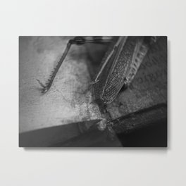 catkill Metal Print