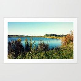 Morning Pond Art Print