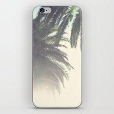 Sunset Palm Tree iPhone & iPod Skin